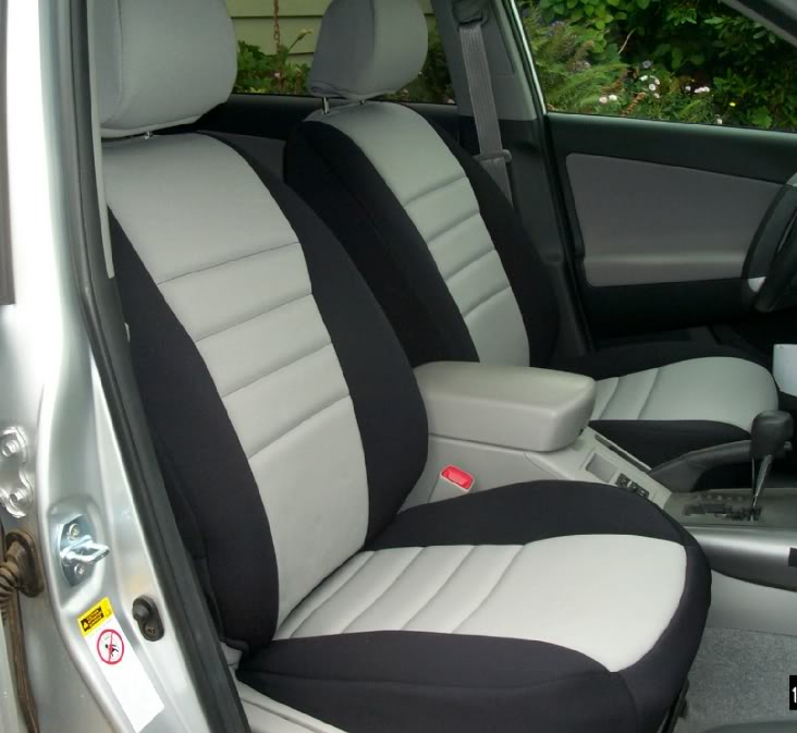 Softex Seat Autos Post