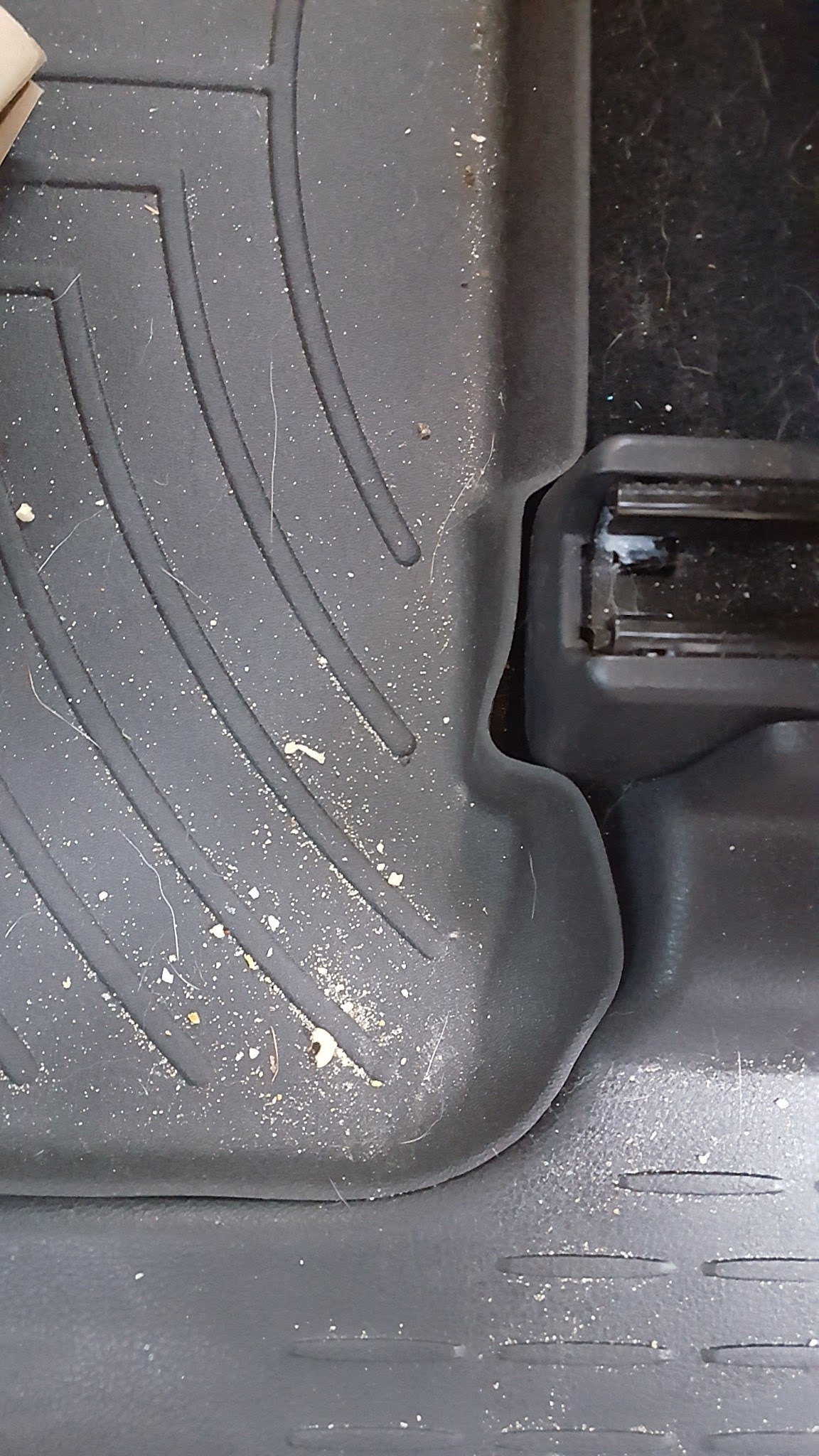 Weathertech mats canadian tire - Click Image For Larger Version Name 20161107_161415_1489192586106 Jpg Views 99 Size 488 1