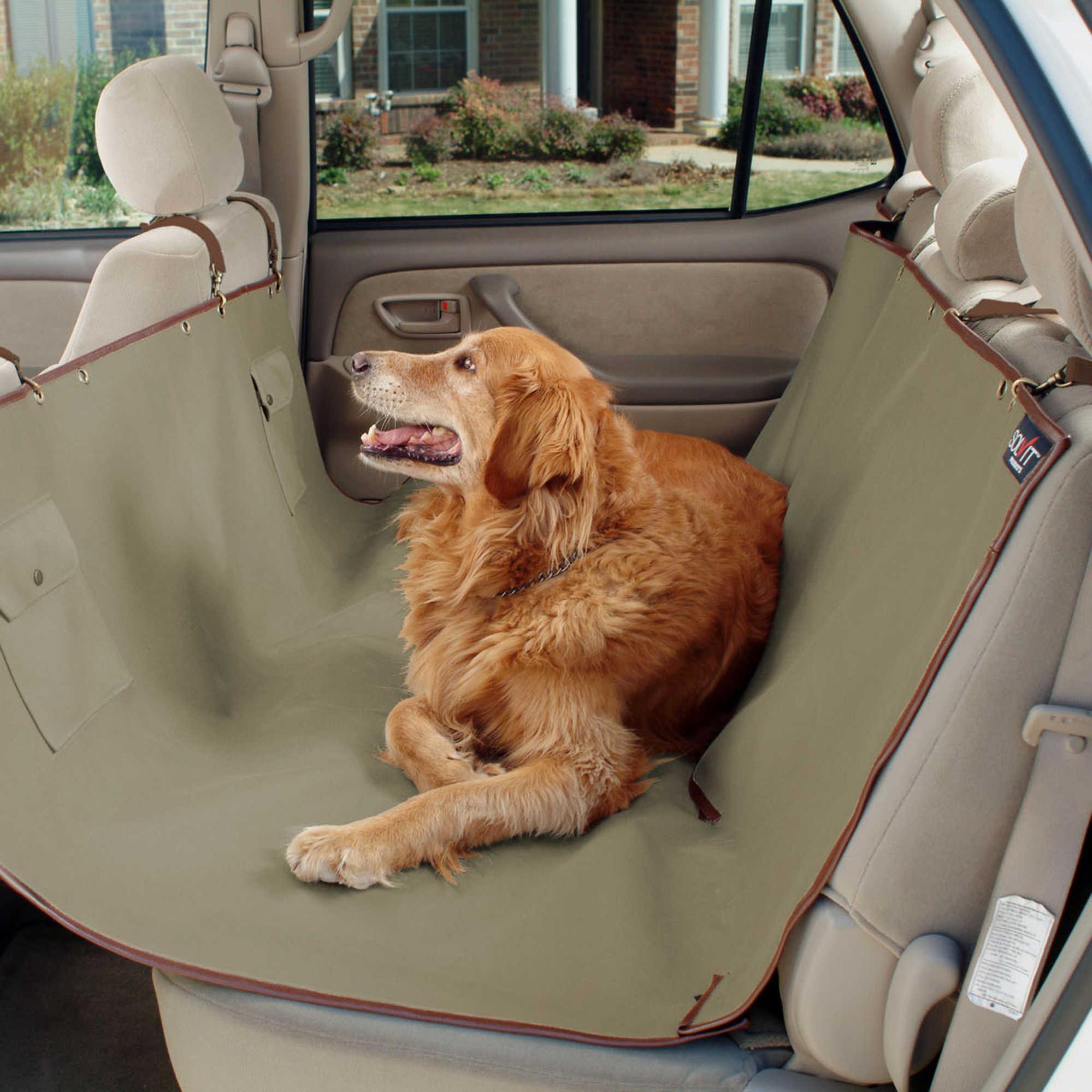 doghammock hammocks dogbed dog personalized yorkie cat cathammock funnypet pin hammock catbed